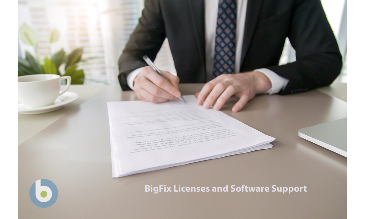 BigFix Licenses and Software Support
